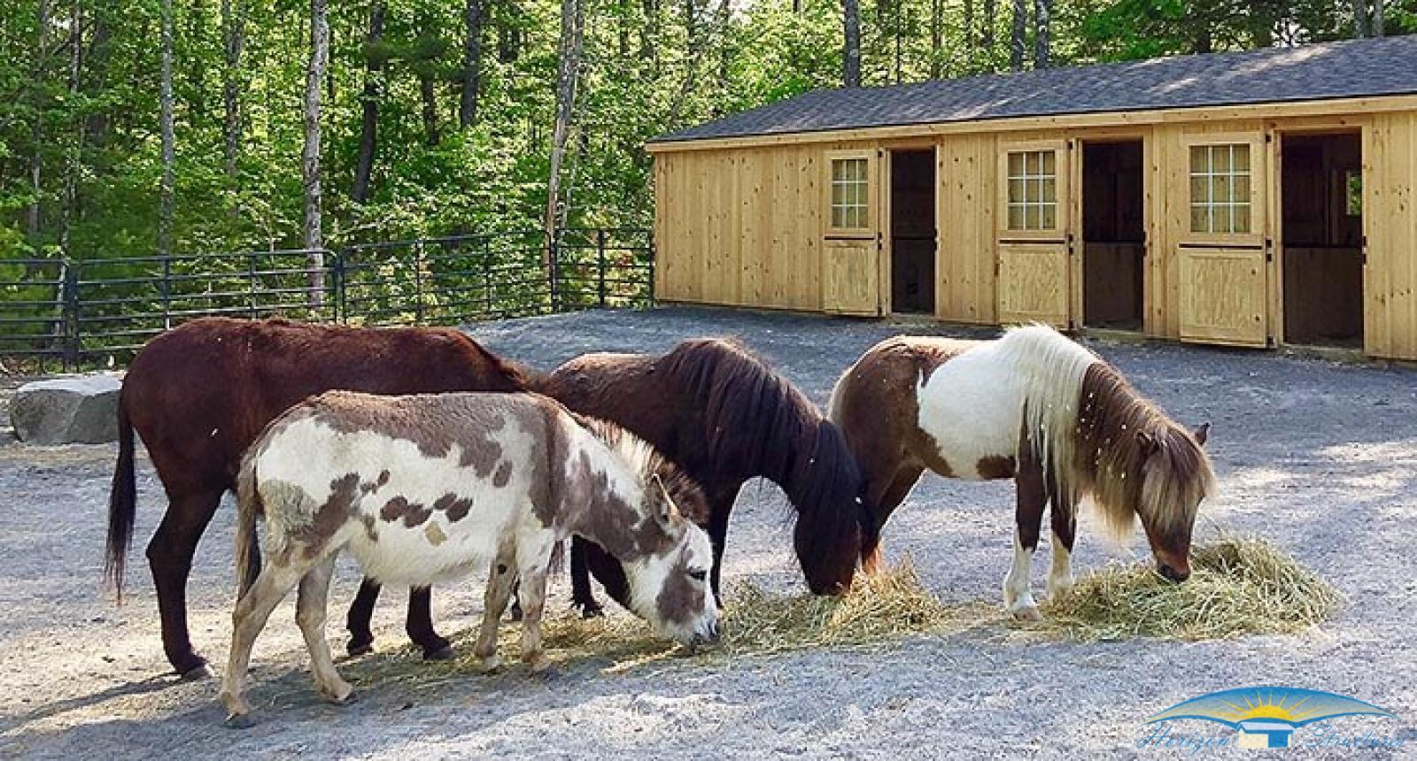 10x42-double-wide-miniature-barn_0