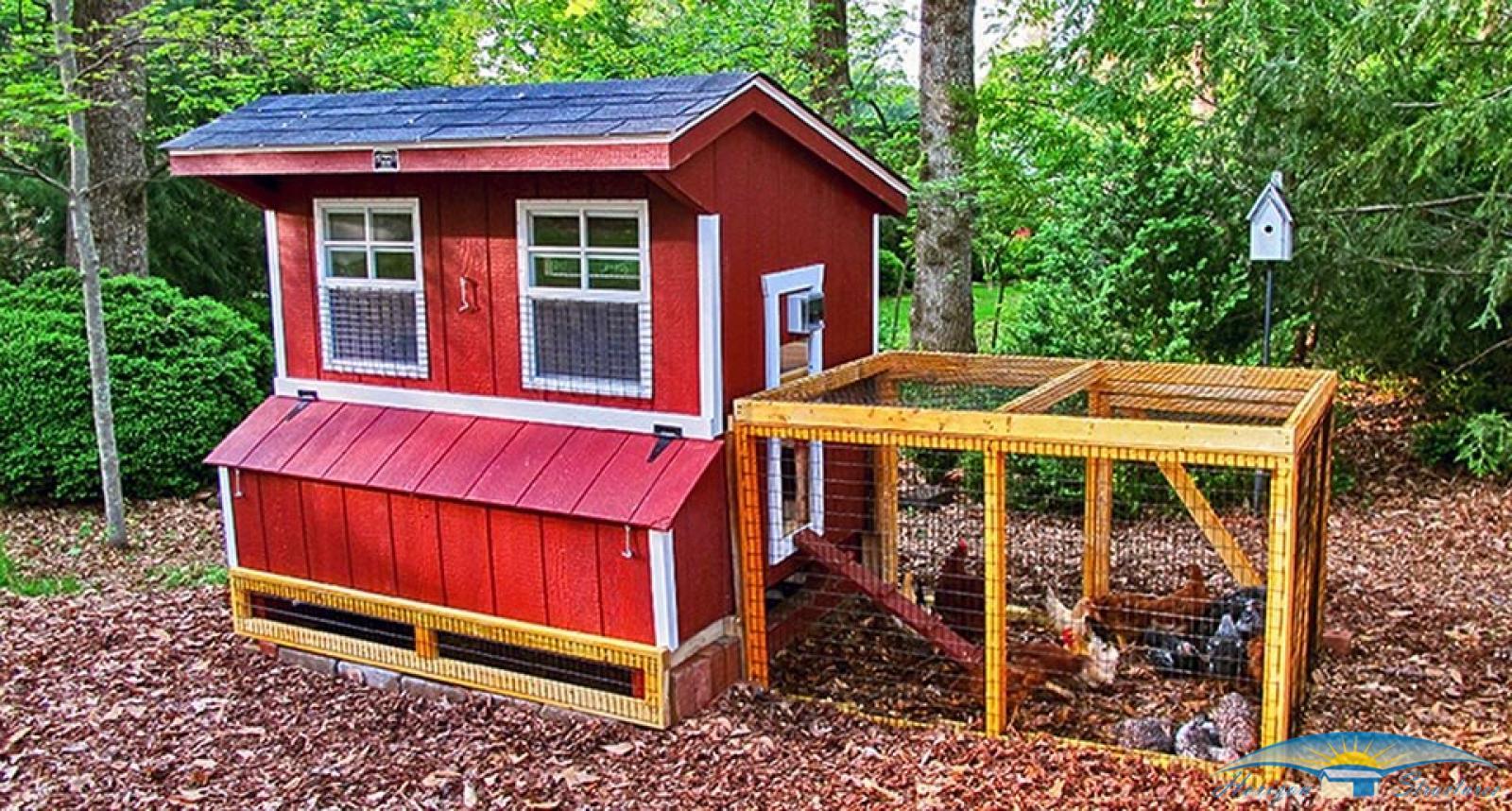 chicken-coop-5x6-with-chicken-run-2_3