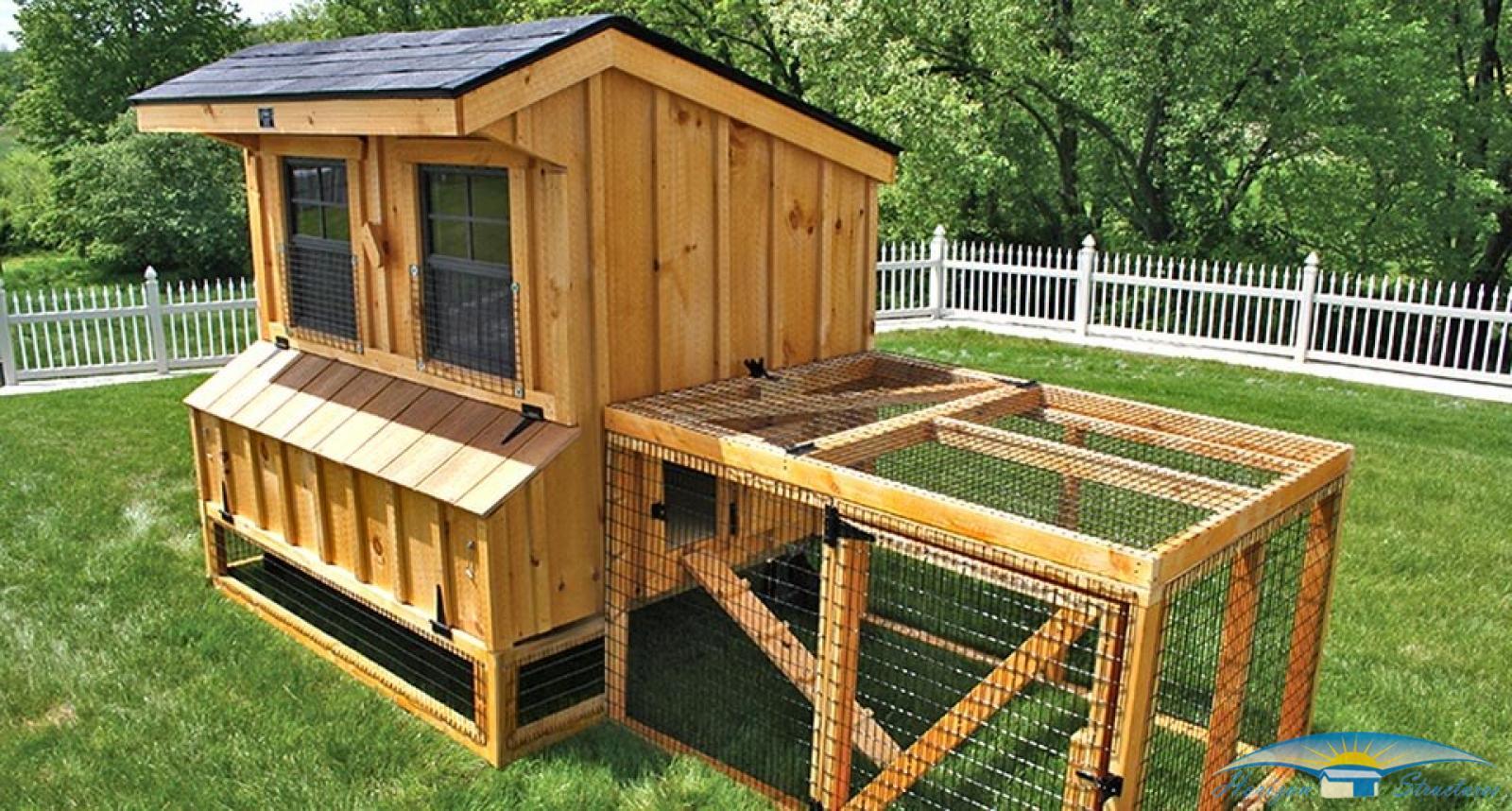 chicken-coop-5x6-with-chicken-run-4_3
