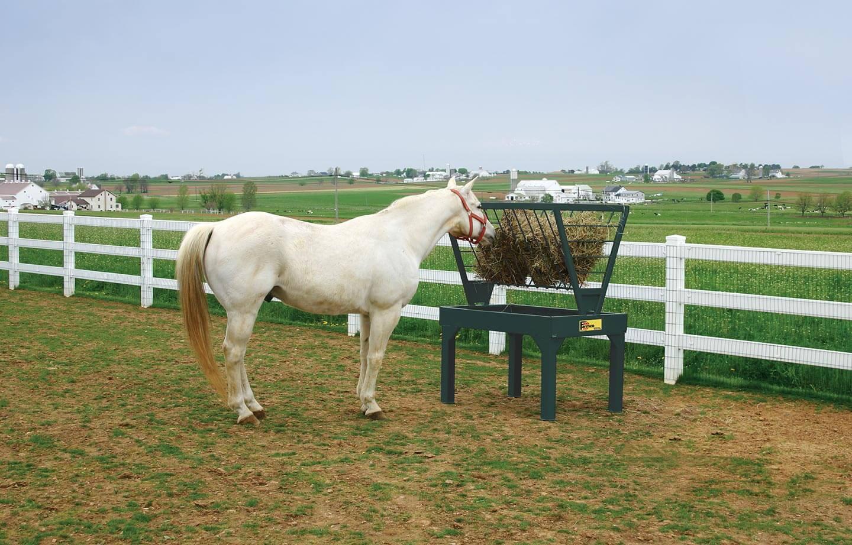farmco_horse