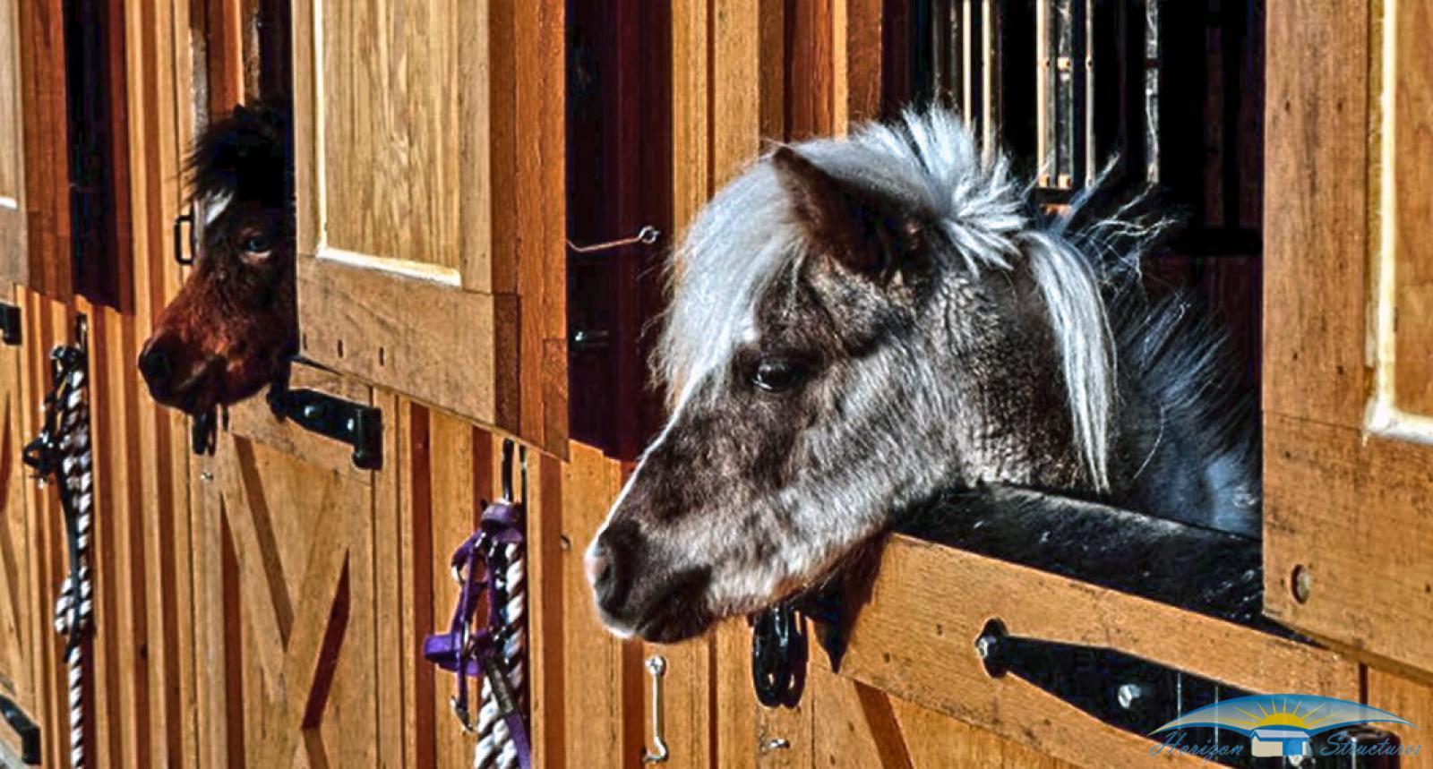 horse-barns-miniature-barns-8x24-mini-shed-row-ponies_0