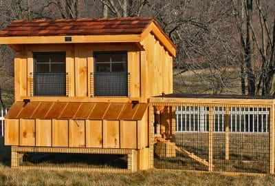 5x6 Chicken Coop with pine board & batten (clear stained) exterior
