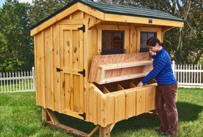 5x6 coop features easy egg collection from OUTSIDE the coop