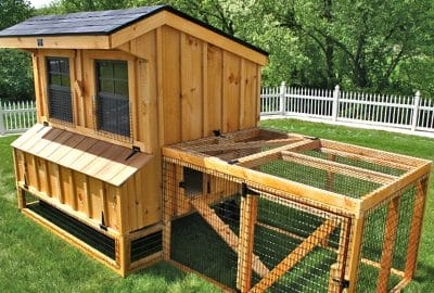 5x6 chicken coop. This (optional) chicken run includes 2 hinged access doors
