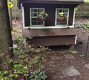 Quaker coop in a lovely garden setting