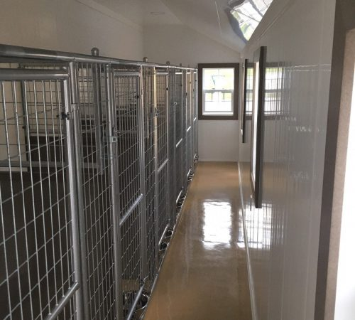 12x32 Kennel feed asile 1